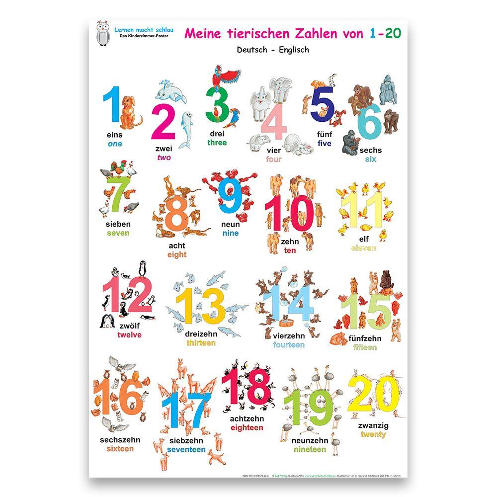 Das bunte Kinder ABC + Meine tierischen Zahlen inkl. Posterschienen  deutsch/englisch
